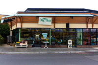 Dig This Store Photos-8855